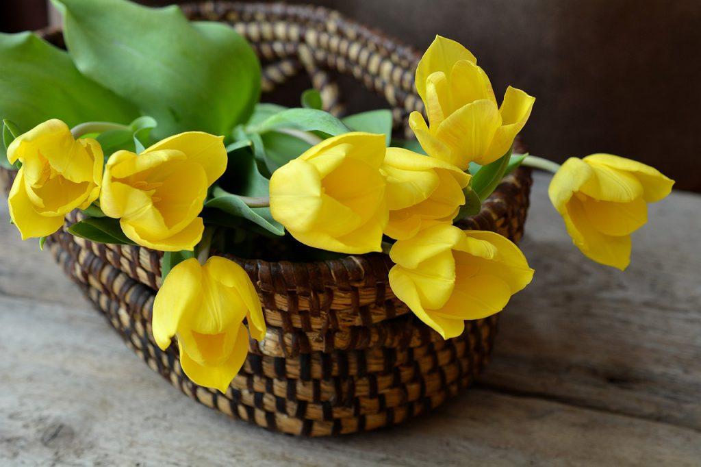 משלוחי פרחים מיוחדים